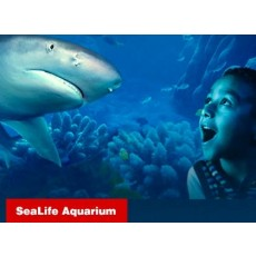 ICON 360: SEA LIFE Aquarium